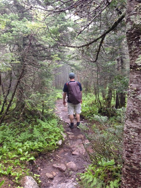 AMC White Mountain Guide: Hiking Trails in the White ...